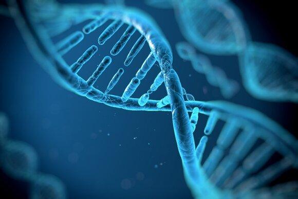 Развитие генетики