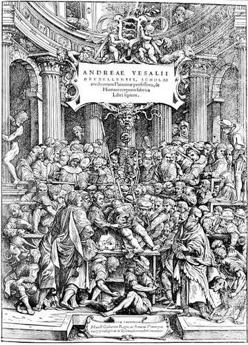Биология в эпоху возрождения